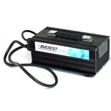 Зарядное устройство Everest Energy EVE-24-30