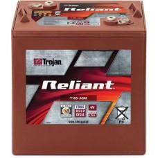 Тяговый аккумулятор Trojan T105-AGM